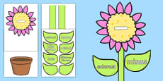 Maths Subtraction Vocabulary Flower Display