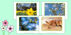 Spring Display Photos Arabic