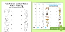 Farm Animals and Their Babies Matching Activity Sheet