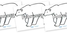 Months of the Year on Polar Bears