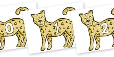 Numbers 0-31 on Leopards