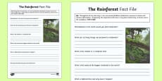 The Rainforest Fact File