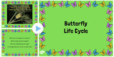Australia - Butterfly Life Cycle Video PowerPoint