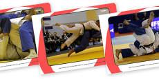 The Olympics Judo Display Photos
