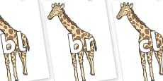 Initial Letter Blends on Giraffe