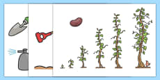 Story Cut Outs to Support Teaching on Jasper's Beanstalk