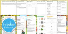 KS1 Summer Fun in the Holidays: In the Garden Activity Pack