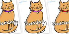 Days of the Week on Pussy Cats