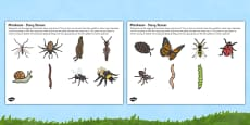 Minibeasts Story Stone Image Cut Outs