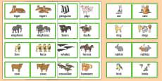 48 Regular Plural Cards