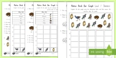 Native Birds Bar Graphs Differentiated Activity Sheets