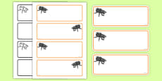 Beetle Themed Editable Drawer-Peg-Name Labels (Colourful)