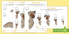 * NEW * Bat Measuring with Cubes Differentiated Activity Sheet