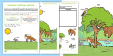 Ecosystem Food Chain and Web Activity Sheets