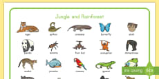 * NEW * Jungle and Rainforest Word Mat