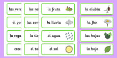 Growth Topic Word Cards Spanish