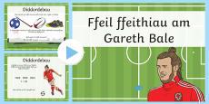 Fact File Gareth Bale  Bilingual Resource PowerPoint