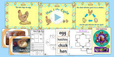 Hen Life Cycle Resource Pack