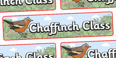 Chaffinch Themed Classroom Display Banner