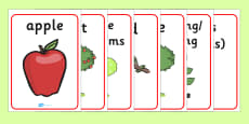 Apple Tree Life Cycle Growth Display Posters