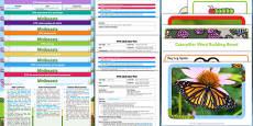 EYFS Minibeasts Bumper Planning Pack