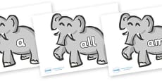 Foundation Stage 2 Keywords on Elephants