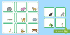 Editable Drawer - Peg - Name Labels to Support Teaching on Rumble in the Jungle