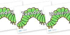 Days of the Week on Hungry Caterpillars to Support Teaching on The Very Hungry Caterpillar