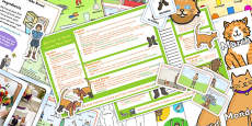 Puss in Boots KS1 Lesson Plan Ideas and Resource Pack