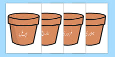 Months of the Year on Plant Pots Urdu Translation