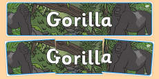 Gorilla Display Banner
