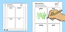 Garden Read and Draw Activity Sheets