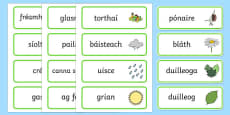 Growth Topic Word Cards Gaeilge