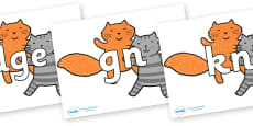 Silent Letters on Cats to Support Teaching on What the Ladybird Heard
