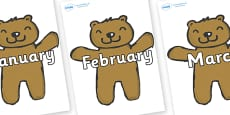 Months of the Year on Teddy Bears