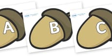 A-Z Alphabet on Brown Acorns