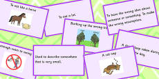 Animal Idioms Matching Cards - Set 3