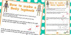 Body Lapbook Instructions Sheet