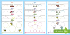 * NEW * UAE EY Addition Differentiated Activity Sheets Arabic/English