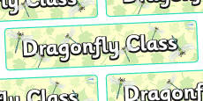 Dragonfly Themed Classroom Display Banner