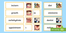 Teeth and Nutrition Word Cards