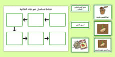 Plant Growth Sequencing Activity Arabic