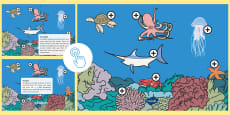 * NEW * Under the Sea Picture Hotspots