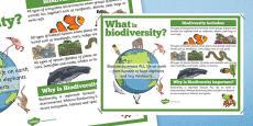 Biodiversity Information Display Poster