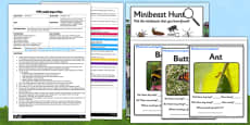 Minibeast Hunt EYFS Adult Input Plan and Resource Pack
