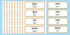 0-100 Number Words Word Cards Polish Translation