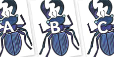 A-Z Alphabet on Stag Beetle to Support Teaching on The Bad Tempered Ladybird