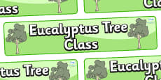 Eucalyptus Themed Classroom Display Banner