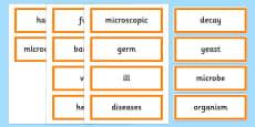 Microorganism Word Cards