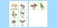 Animal Rescue Centre Mammal Badges